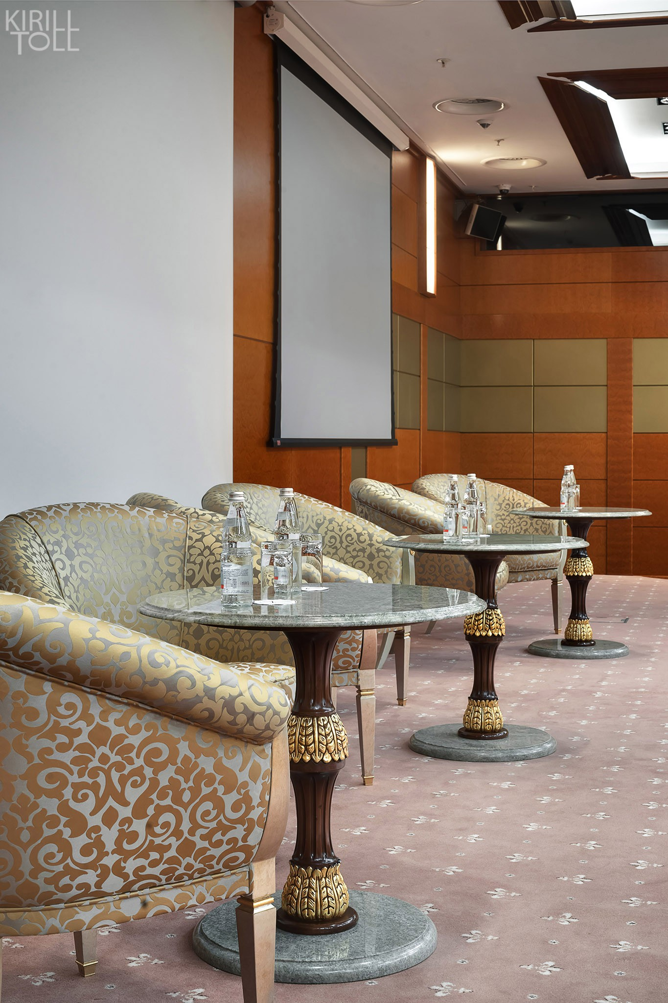 Large hall for meetings and presentations