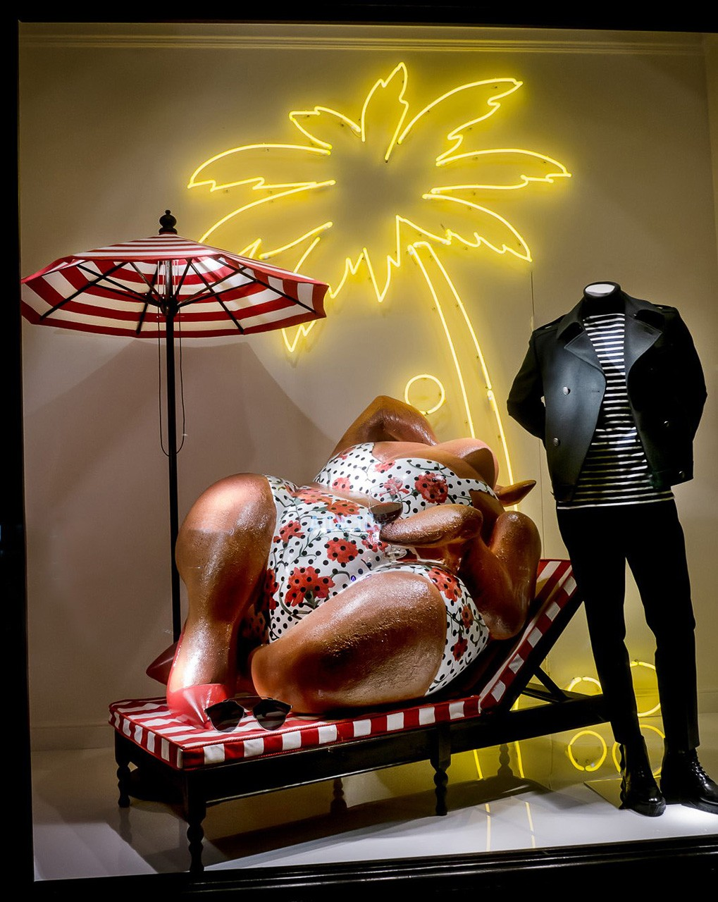 The different types of window displays